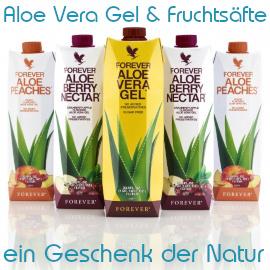 Aloe Vera - ist ein exotisch-fruchtiges Nahrungsergänzungsmittel und Power für Deinen gesamten Körper
